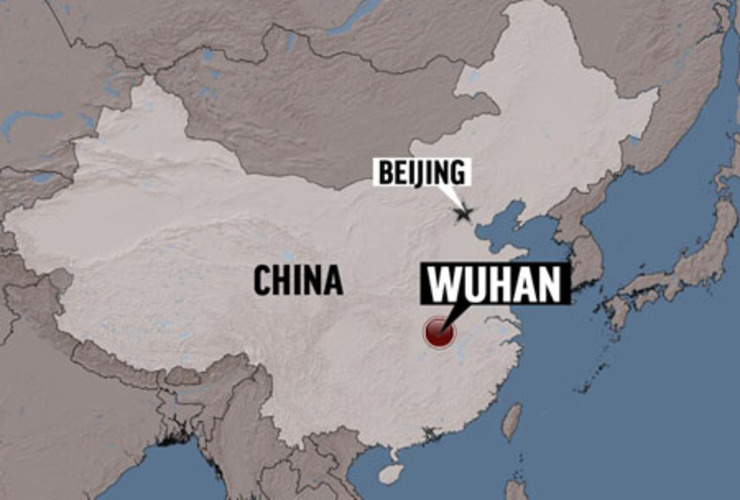 Cotton: Circumstantial evidence 'all points to the Wuhan labs'