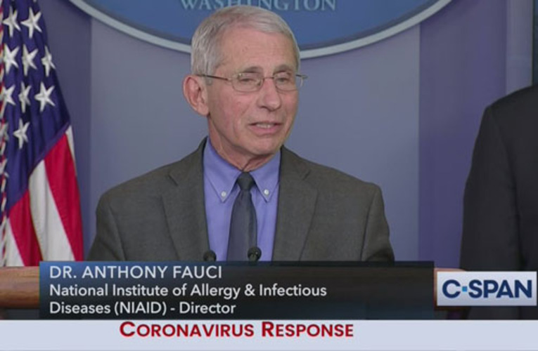 'Enough of Dr. Fauci': His errors speak louder than words