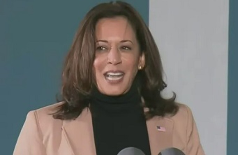 Kamala Harris reportedly taking calls from heads of state