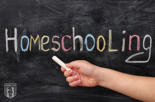 Youth Homeschooling: A Smart Parent's Guide to Successfully Homeschooling Children