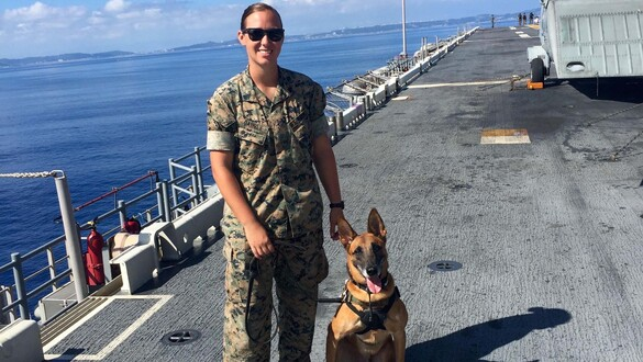 Face of Defense: Marine Adopts, Reunites With Military Working Dog