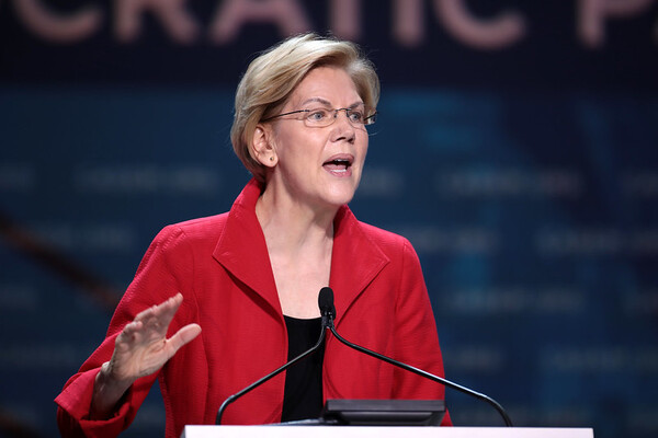 Warren Tax Plan Could Give Foreign Investors an Advantage
