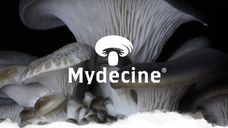 Mydecine Innovations Signs Definitive Agreement to Acquire Mindleap Health's Advanced Digital Telehealth Platform