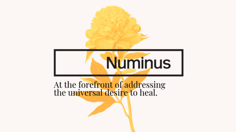 Numinus Announces Short Form Prospectus Offering of Units for Gross Proceeds of Up To $4.05 Million