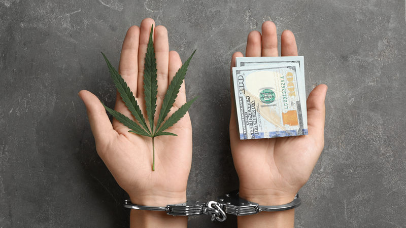 The DEA Proves It Must Be Immediately Abolished