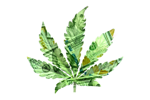 New Analysis Shows Tax Revenue From Cannabis In The Billions