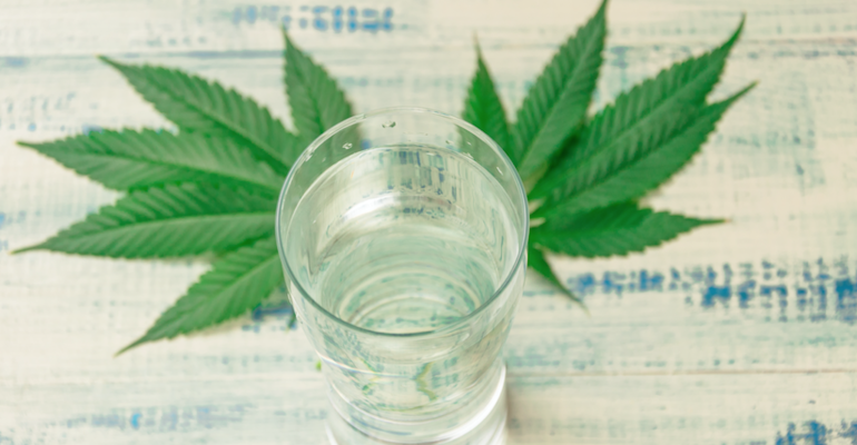 Pabst's entry into cannabis-infused drinks might untap interest in the category