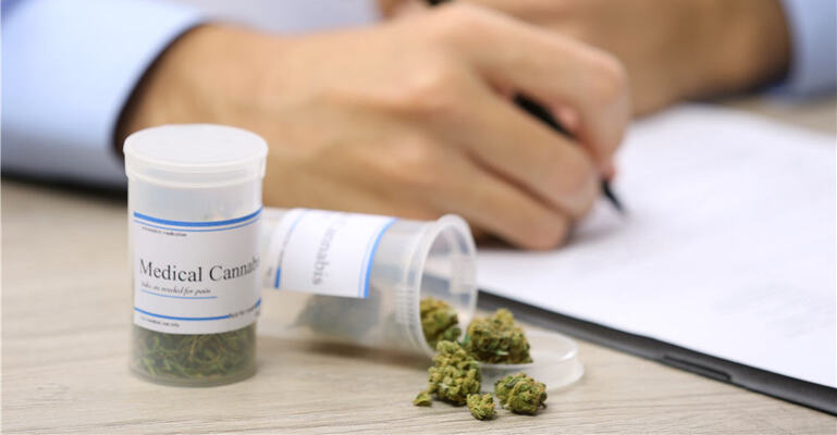 San Francisco City College Offering Cannabis Studies Degree