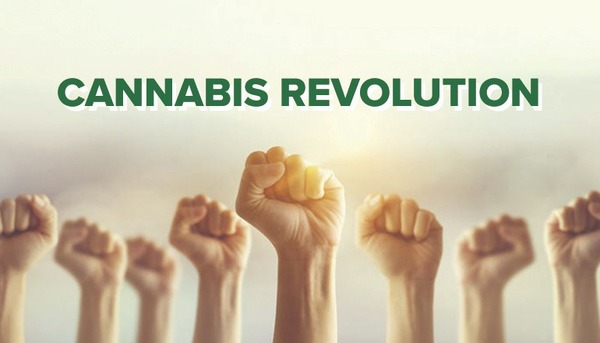 The U.S. Cannabis Revolution: Two Charts