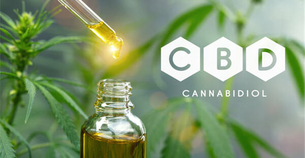 Is CBD 'Harmful' to Our Liver? No.