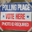 A Look at Vote Harvesting and Polling Accuracy