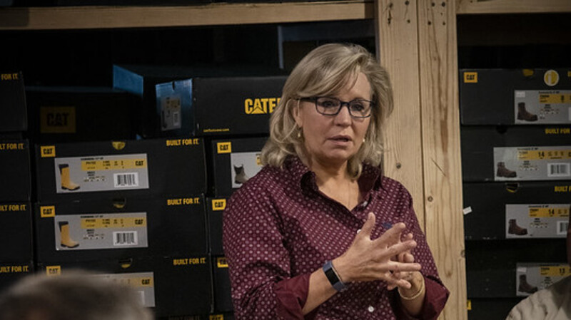 Liz Cheney Was A Primary Culprit Of Spreading Fake News On Russian Bounties To Undermine Trump