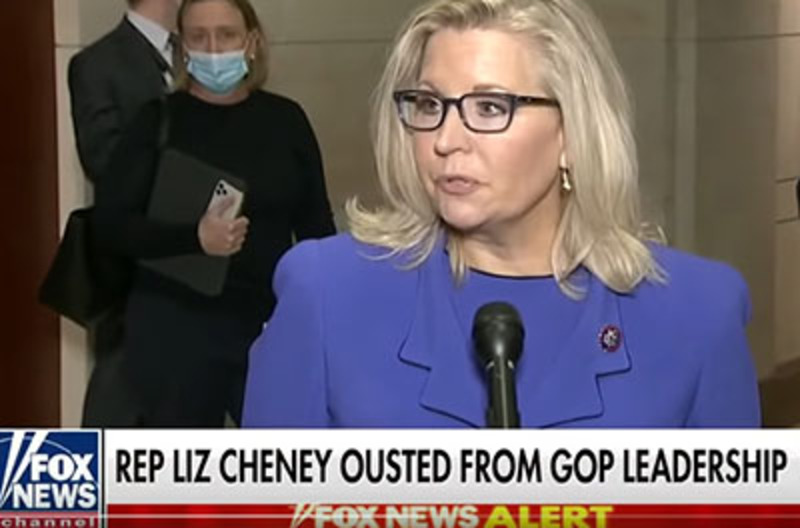 'Liz Cheney runs to the cameras after getting ousted'